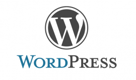WordPress: has_tag & has_category